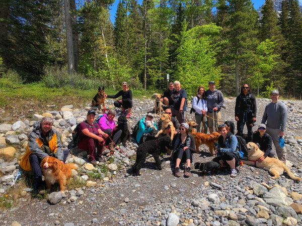Rocky Mountain Dog group hike