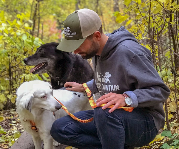 man with two dogs on hiking trail