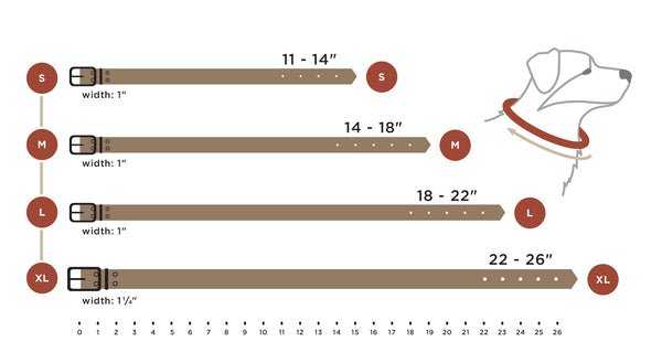 leather collar size chart