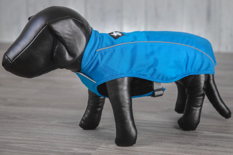 blue winter dog jacket coat on model dog