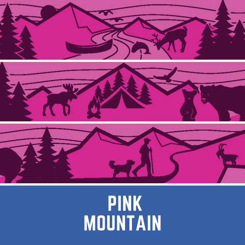 pink mountain leash