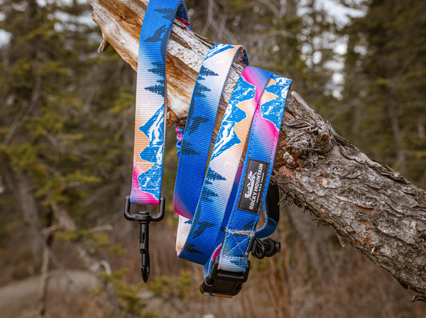 Canmore dog leash