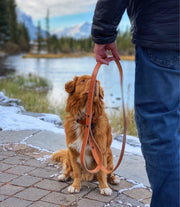 RMD all-leather dog leash