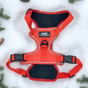orange harness back