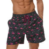 buy-flamingo-trunks-for-men