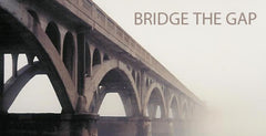 Bridge the Gap Small Group Study Guides