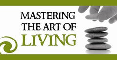 Mastering the Art of Living, Vol. 1 Graphics