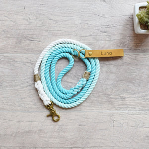 teal leash and collar