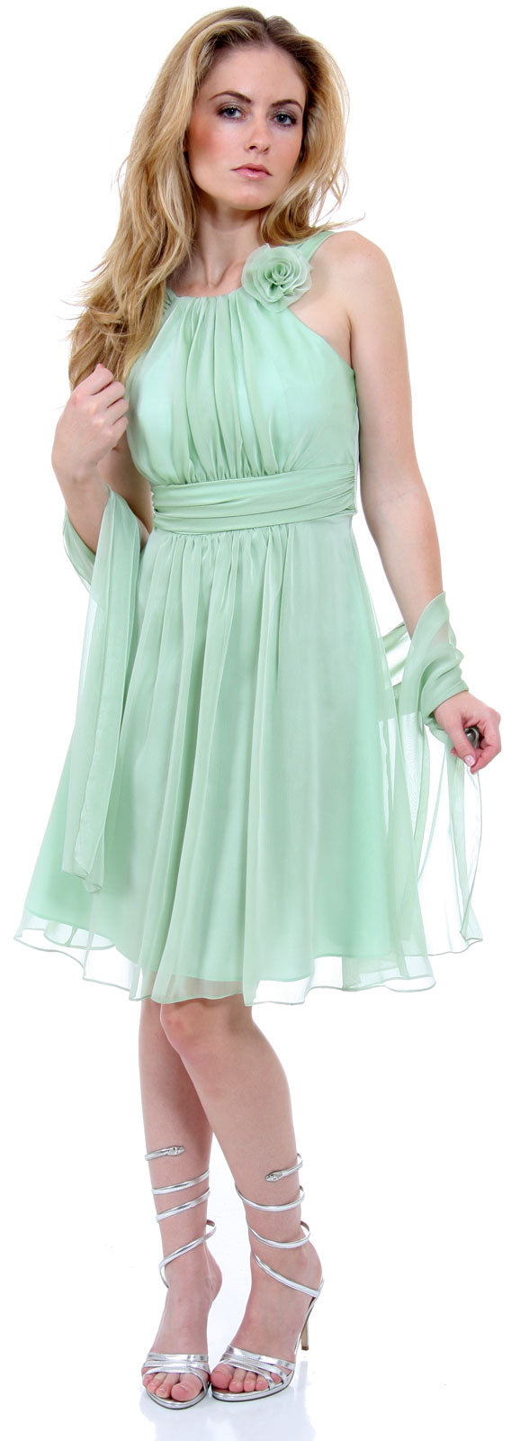Image of Empire Cut Shirred Knee Length Bridesmaid Party Dress in sage alternative view.