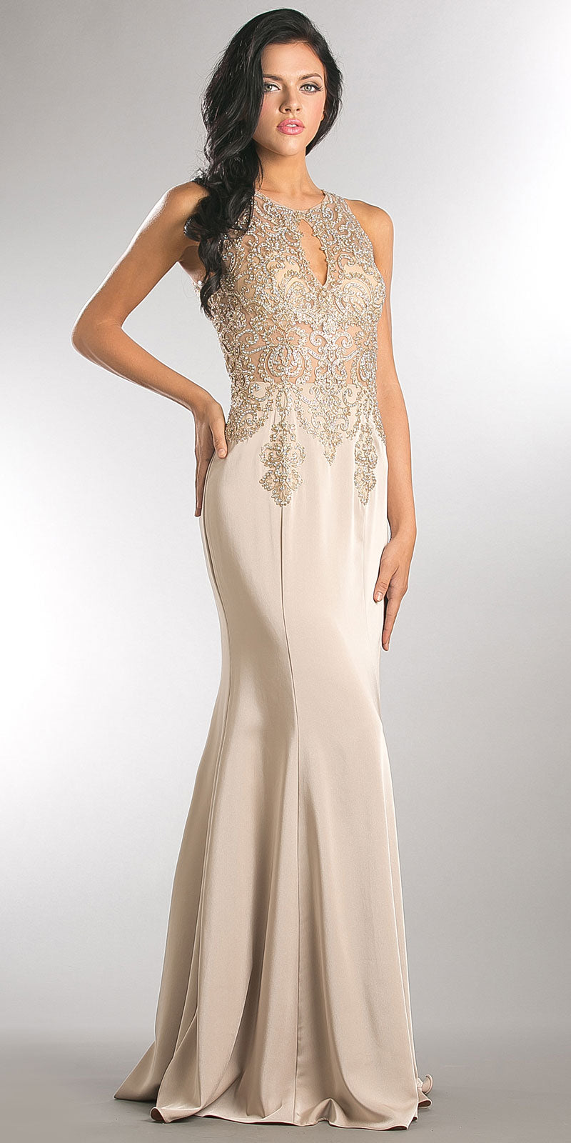 Image of Exquisite Lace Bodice Long Formal Evening Dress in Champaign
