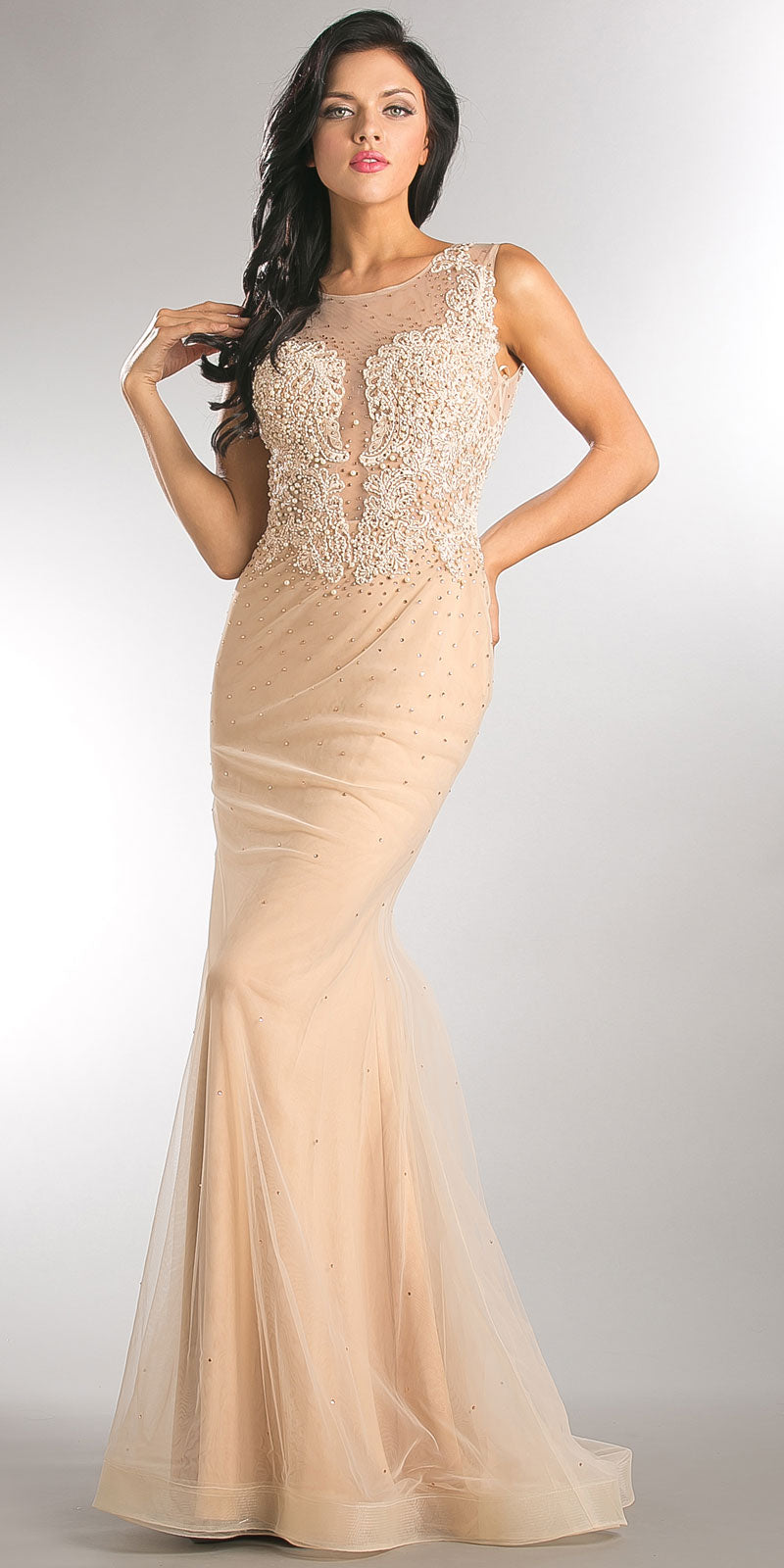 Main image of Embroidered Lace Top Mesh Tulle Long Prom Pageant Dress