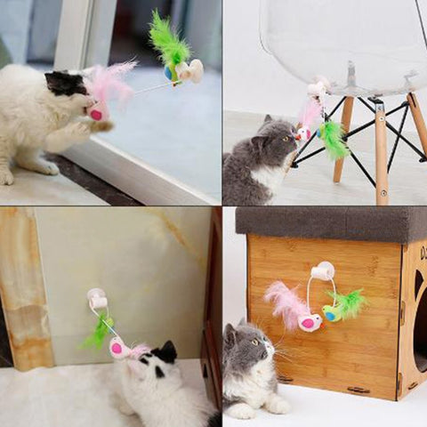 Cat Suction toy