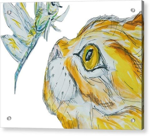 Cat & Bug Stare Down - You Looking At Me - Acrylic Wall Art