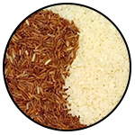 Is it necessary to leave rice for weight loss? Does rice effect our fitness?