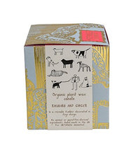 Load image into Gallery viewer, Dogs Organic Candle (Rhubarb and Ginger scent)