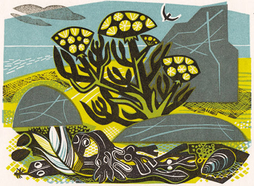 Rock Samphire print by Clare Curtis