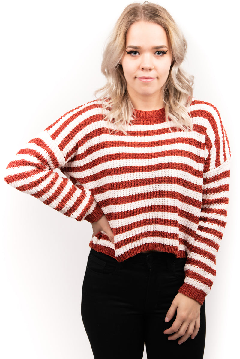 Sadie and Sage Striped Knit Sweater