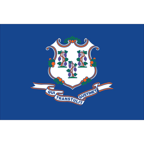 Connecticut State Flag Outdoor Nylon