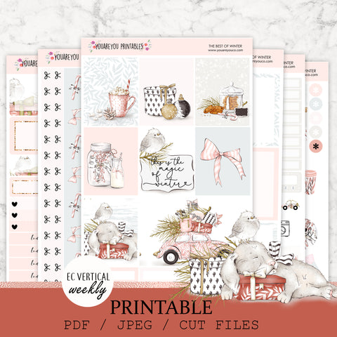 PRINTABLE Erin Condren Planner Stickers, Vertical Weekly Kit - The Best of Winter