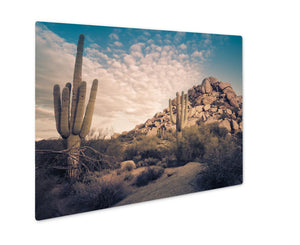 Metal Panel Print, Desert Landscape Scottsdale Phoenix Arizonareimage Cross - VegasheatX