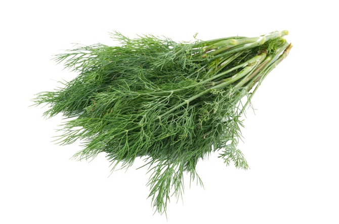 Fennel Fronds (30G)