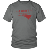 THE NORTH REMEMBERS SHIRT New England Patriots 2018 AFC Champions