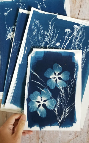 Surprise cyanotypes