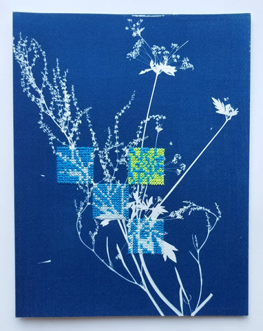 Botanical cyanotype series - Study in blue and neon