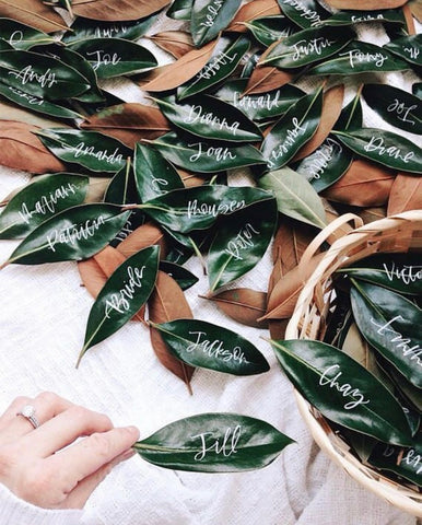 Green tree leaves with handwritten names on them as placecards