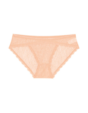 Striped Lace Mesh Brazilian Panty