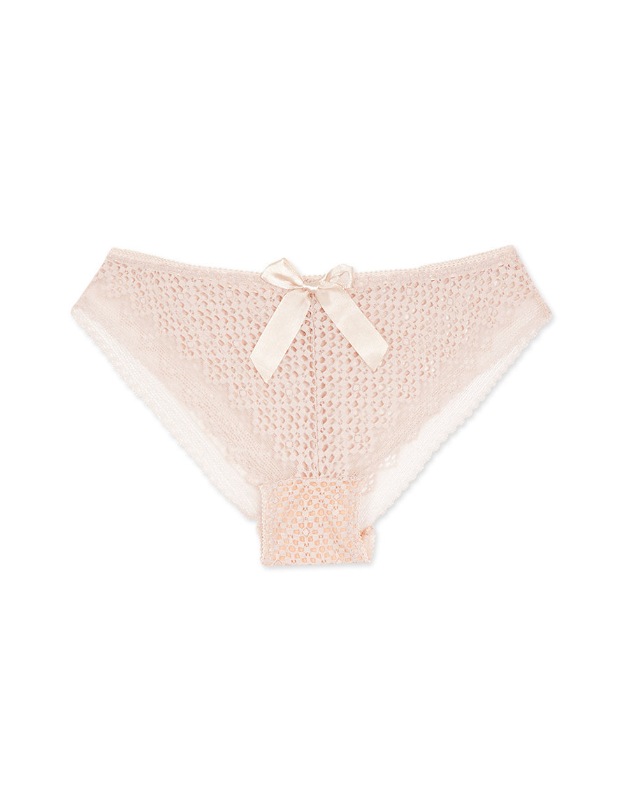 Lace Mesh Brief Panty