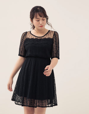 Elegant Lace Mesh Dress