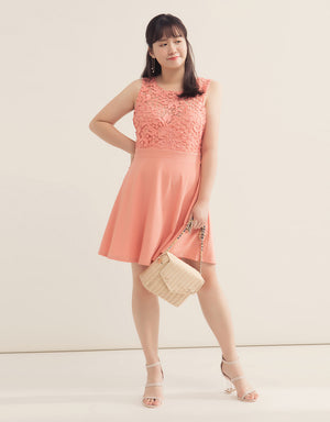 Lace Jacquard Sleeveless Flare Dress
