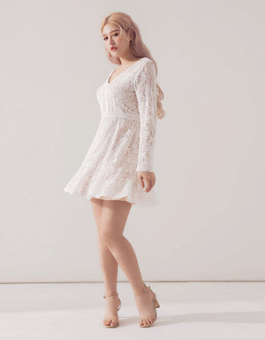 Round Neck Jacquard Lace Dress
