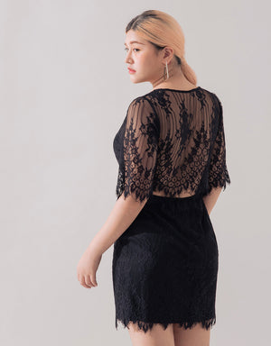See Through Eyelash Lace Hollow Back Dress
