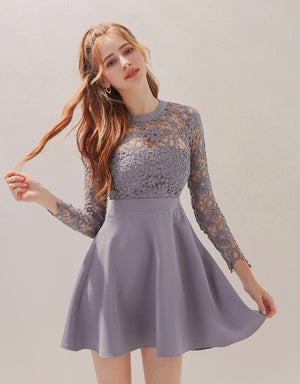 Transparent Jacquard Lace Splice Skater Dress (with Bralette)