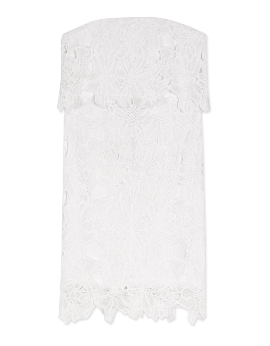 Ribbon Back Lace Jacquard Tube Dress