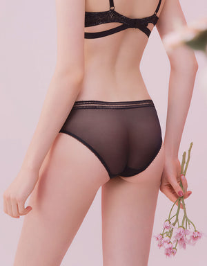 Transparent Lace Trim Mesh Brief Panty