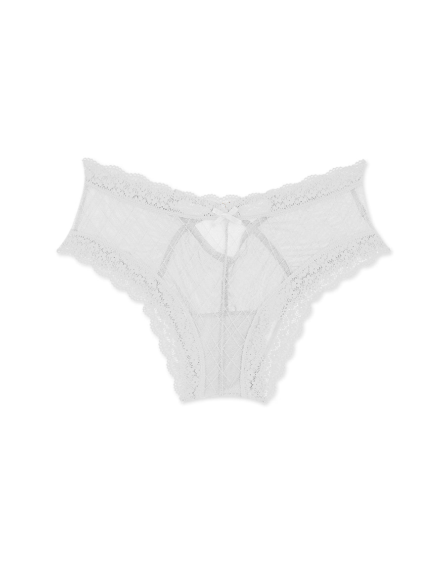 Hollow Fish Net Lace Brief Panty