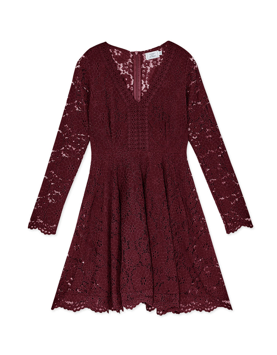 Jacquard Lace V-Neck Flare Dress