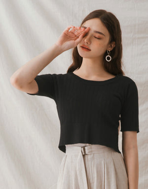 See-Through Ribbed Splice Crop Top