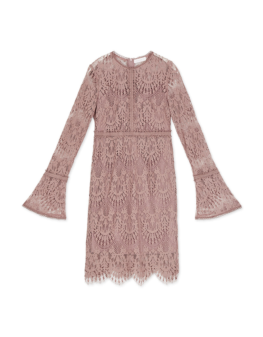 Curvy Soft Lace Long Sleeve Dress