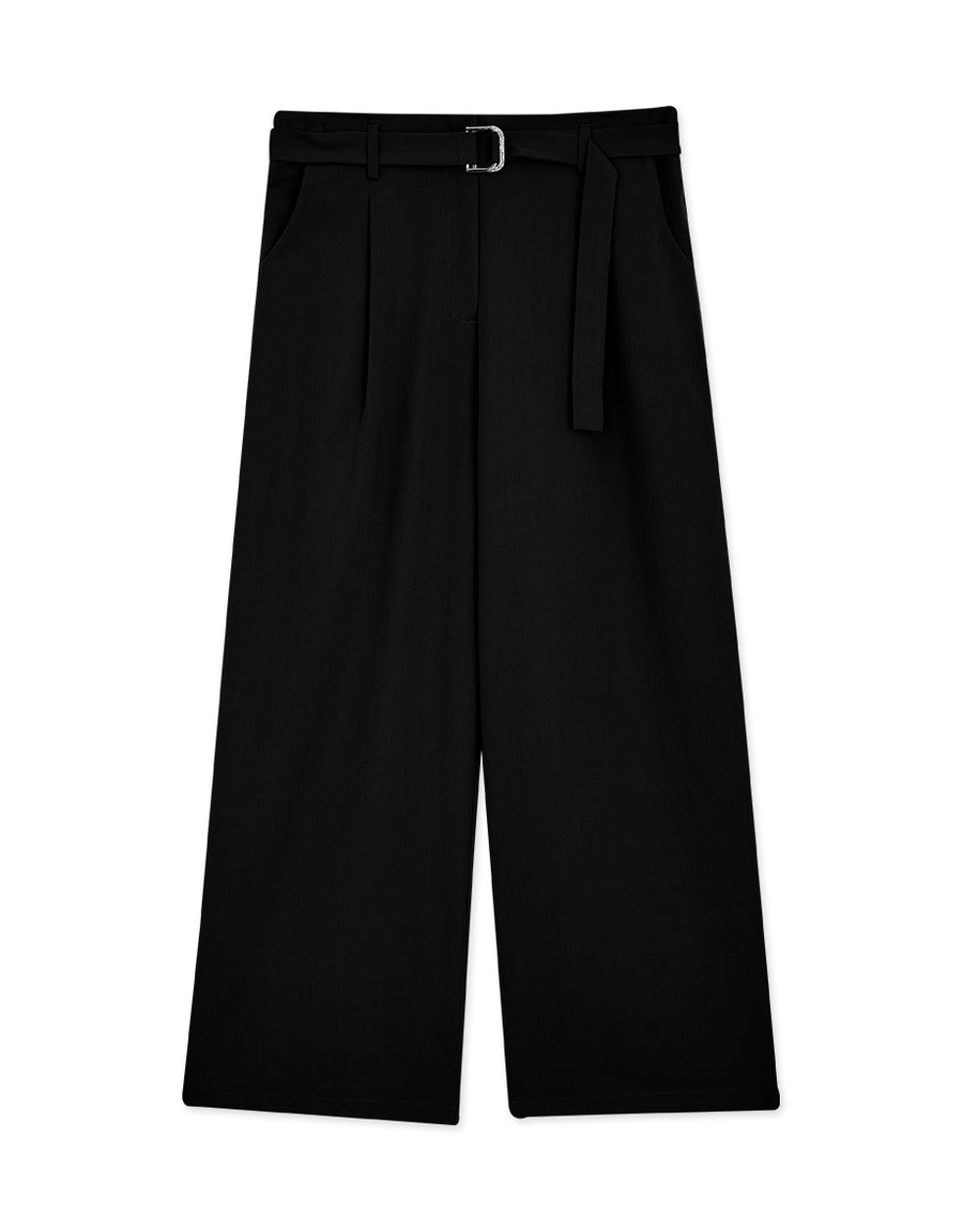 Sleek Pleated Wide Pants
