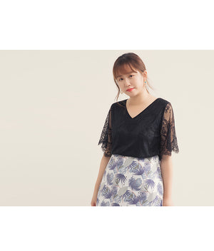 V Neck Eyelash Lace Top