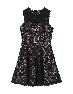 Lace Jacquard Fit& Flare Dress