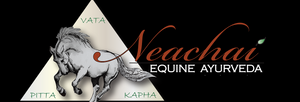 Ayurveda and Nutrition for Your Horse