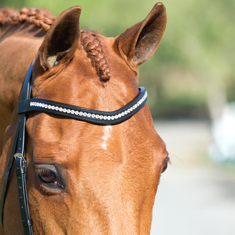 Warehouse sale browbands for the horseback riders on a budget.