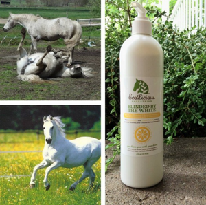 The ecolicious all natural product for grooming horses.
