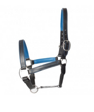 Load image into Gallery viewer, Leather Halter with Color Accents