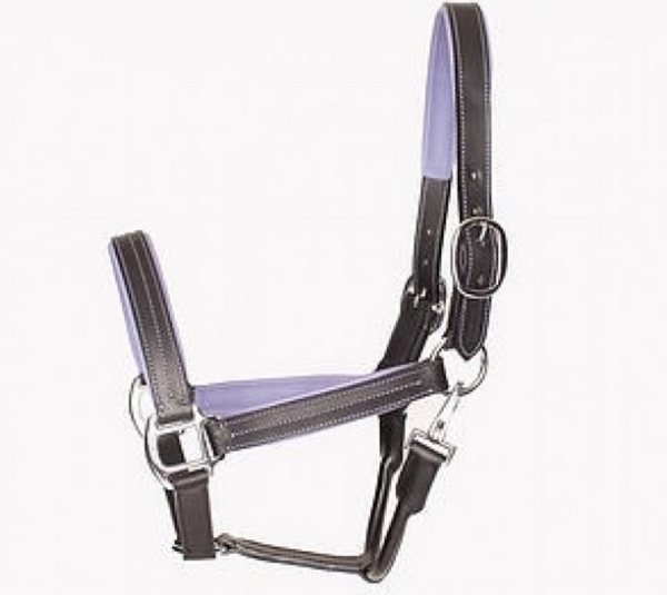 Equestrian Fashion Outfitters leather horse halter for fashionable horseback riders.